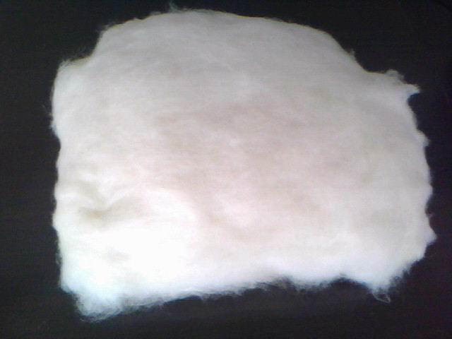 漂白亚麻纤维