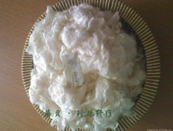 珍珠纤维——海贝丝