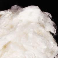 驼绒蛋白纤维